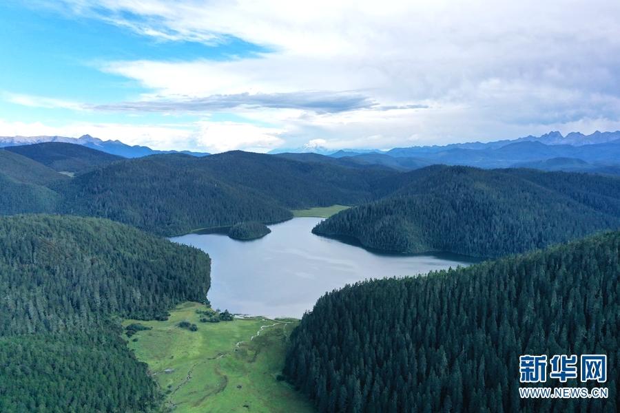 云南已划建自然保护地362处 总面积达549.58万公顷