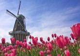 漢語正式成為荷蘭中學畢業考試外語選考科目