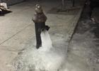 紐約肯尼迪機場航站樓水管爆裂淹水 場面混亂