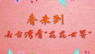 """春來到 去臺灣看""""花花世界"""""""