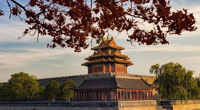 一到秋天,故宮就美成了紫禁城