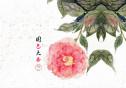 """""""國色天香""""與您""""香""""約瀟湘"""