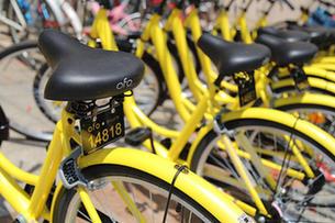 11歲男孩被撞身亡 共享單車企業擔何責