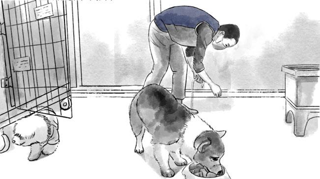 """寵物們的臨時""""奶爸"""""""