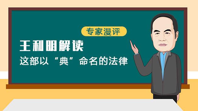 """【专家漫评】王利明解读这部以""""典""""命名的法律"""