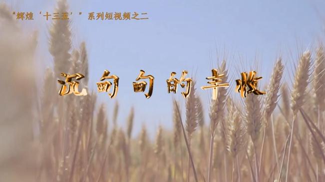 【音畫坊】沉甸甸的豐收