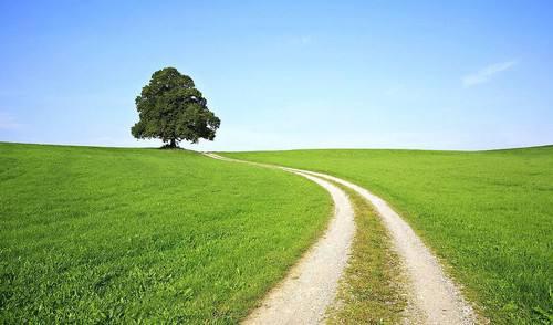 生態優先 綠色發展