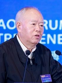 中國工程院院士曹湘洪