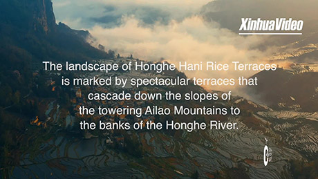 World Heritage Sites in China: Hani Rice Terraces