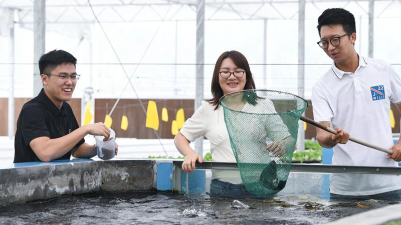 Three youngsters start aquaponics production base in Guangdong