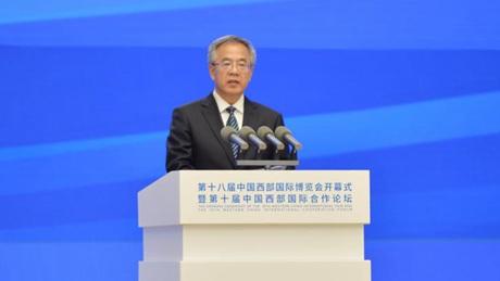 Vice premier stresses progress in developing western regions