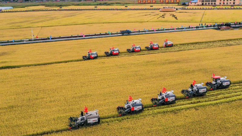 Demonstration event held to mark Chinese farmers' harvest festival in Jilin