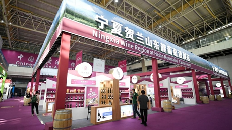 NW China's Ningxia holds int'l wine culture, tourism expo
