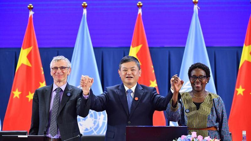 In pics: closing plenary of High-Level Segment of COP15