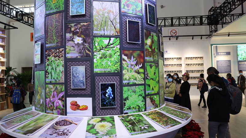 COP15 venues open to public for free