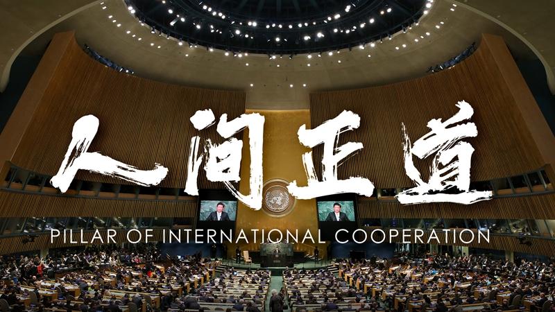 Pillar of International Cooperation