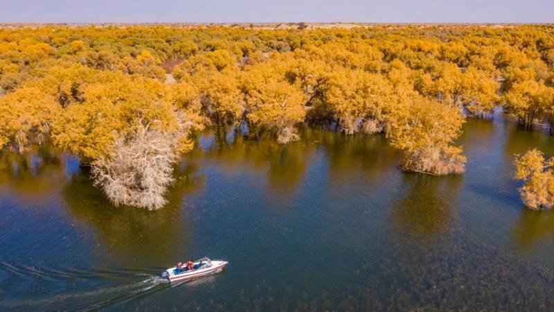 Scenery of Lop Nur National Wetland Park in Yuli, Xinjiang
