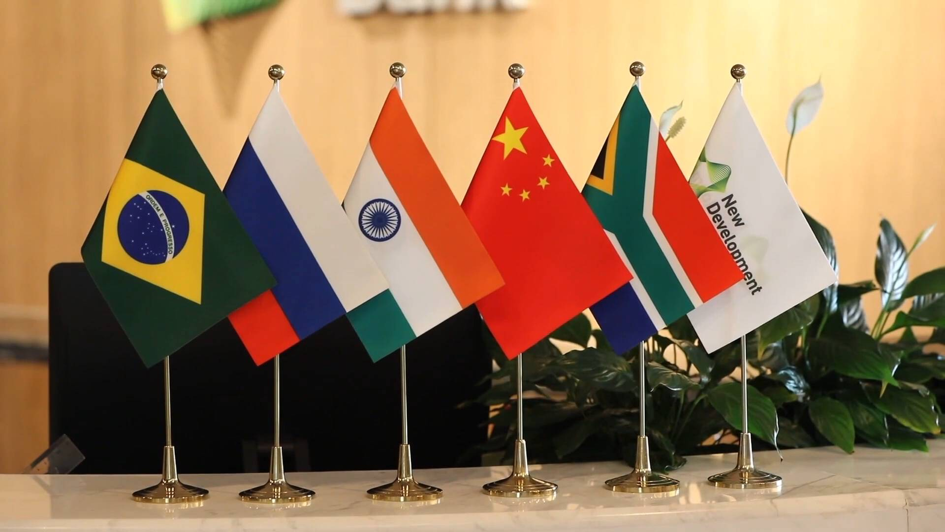 GLOBALink | BRICS is one of very fine global institutions: Indian expert