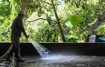 Staff members start operation to clean up waste on Wuzhizhou Island, Hainan