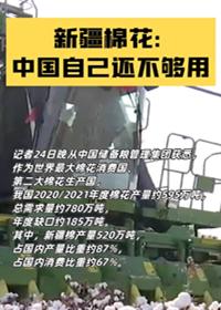 新疆棉花:中國自己還不夠用