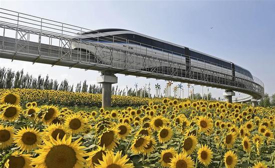 第九屆中國花博會開幕