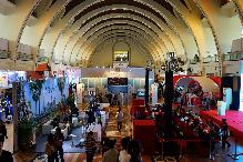 """上海世界旅遊博覽會開幕,中外目的地共呈""""環球盛宴"""""""