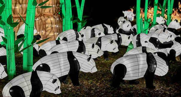巴黎植物園舉辦動物主題燈光展