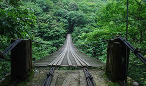 我国森林旅游助力脱贫攻坚成效显著