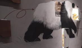 四川成都 探访成都大熊猫博物馆