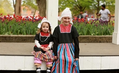 美國荷蘭小城的鬱金香節