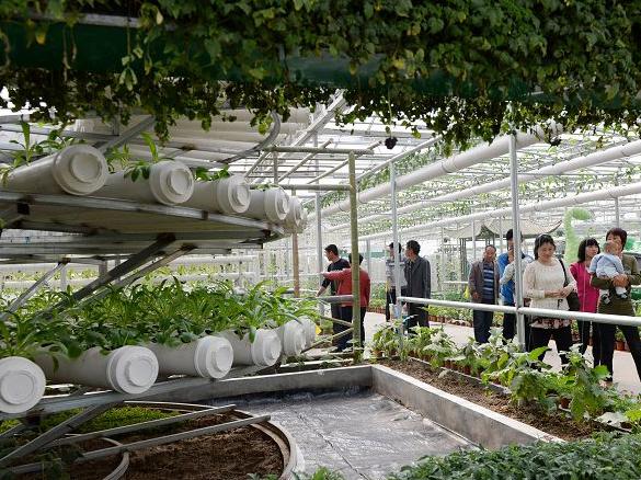 第五屆北京農業嘉年華將于3月在昌平區舉辦