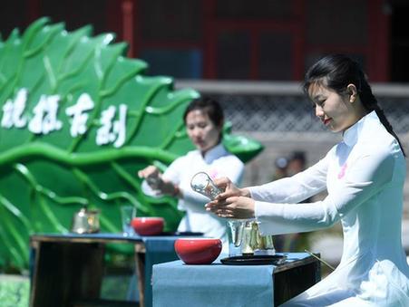 八大處中國園林茶文化節開幕