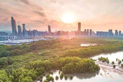 深圳國際低碳城論壇開幕