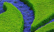 北京世園會將呈全球園藝盛宴,65個國家和國際組織書面確展