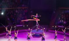 布達佩斯國際馬戲節開幕