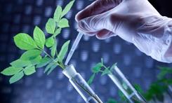 江西贛州助推生物醫藥産業發展