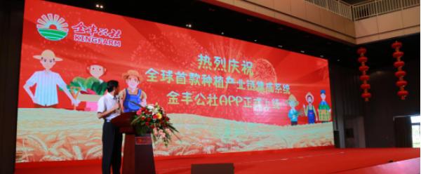 金豐公社成立一年優勢初顯 覆蓋99個縣服務農戶180萬