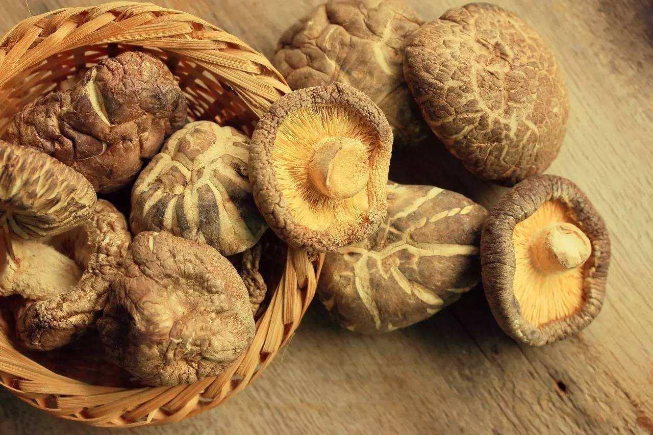 吃蘑菇可降低患認知障礙風險