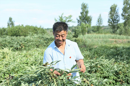 中國經濟的韌性 | 山西潞安:唯待春風看牡丹