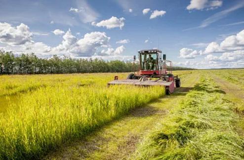 寧夏推進農村集體産權制度改革