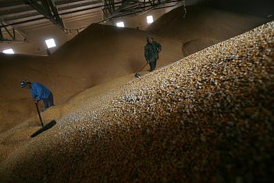 """糧庫實嗎、質量好嗎、進口多嗎——中國的糧食安全""""三問"""""""