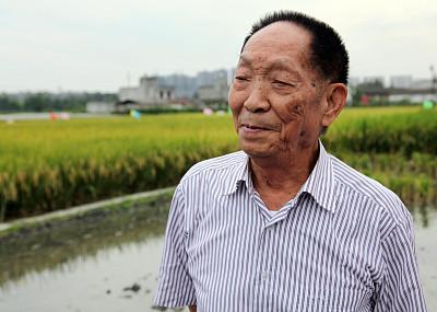 袁隆平出任第三代雜交水稻種業有限公司董事長