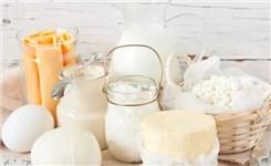 【防疫科普|飲食篇】如何正確認識乳類食品的營養優勢