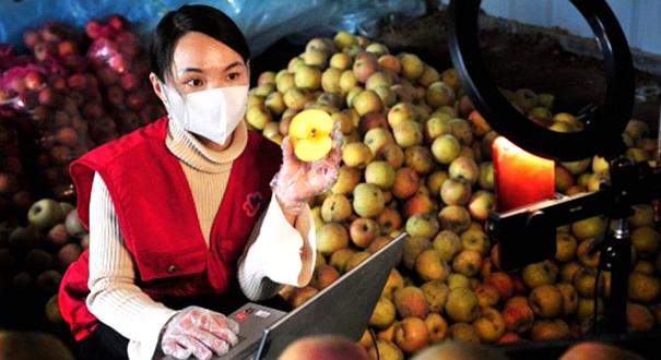 蔬果滯銷、小本生意難做怎麼辦?權威回應來了