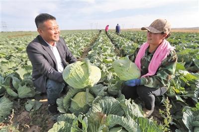 京蒙協作 擴建蔬菜廠助脫貧