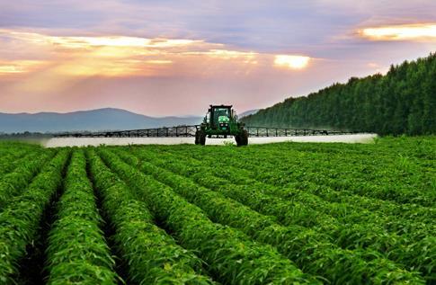四川西充:有機農業帶來好收成、好環境