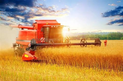 特色農産品網絡銷售成為農民豐收節亮點