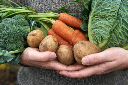 農業農村部:決不能出現係統性農産品質量安全事件