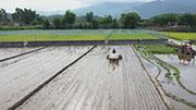 """農業科技進步貢獻率超60%,糧食生産正告別""""面朝黃土背朝天""""—— 從會種地走向""""慧""""種地"""