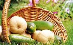 農業農村部:推動脫貧地區産業可持續發展